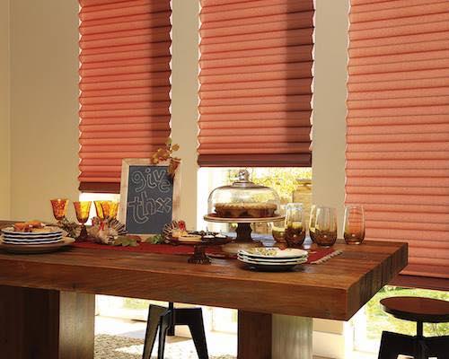 Hunter Douglas Window shades