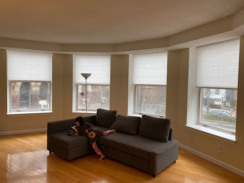 white cellular shades